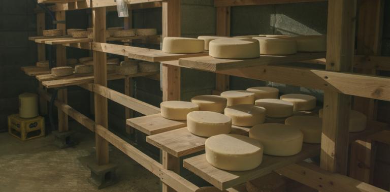 チーズ熟成室