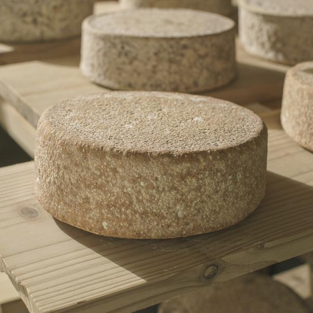 風土が育てたチーズ